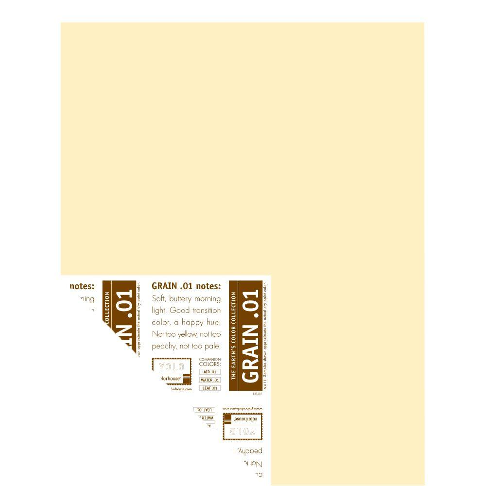 YOLO Colorhouse 12 in. x 16 in. Grain .01 Pre-Painted Big Chip Sample