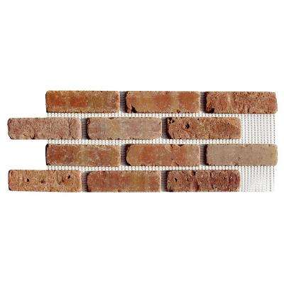 Brickweb Dixie Clay 8.7 sq. ft. 28 in. x 10-1/2 in. x 1/2 in. Clay Thin Brick Flats (Box of 5)