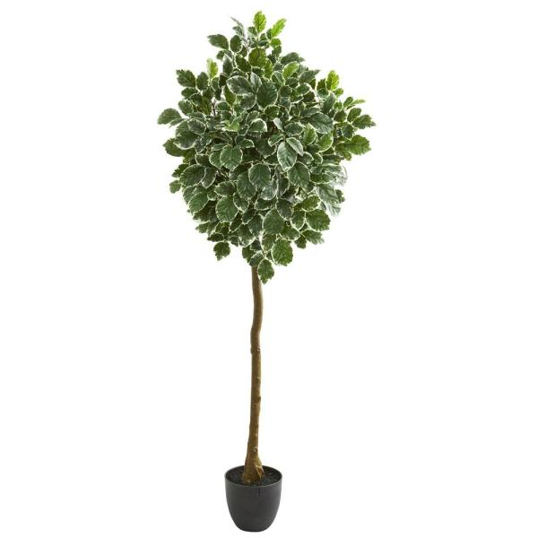 Nearly Natural Indoor 6 Variegated Aralia Artificial Tree