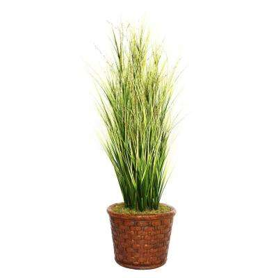 65 in. Tall Onion Grass with Twigs in 17 in. Fiberstone Planter