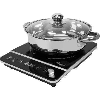 1800W Single Burner 13 in. Black Hot Plate with Temperature Controls