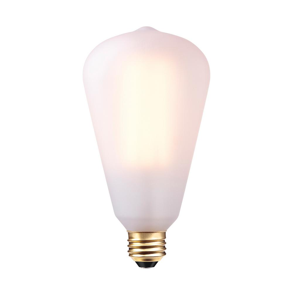 60-Watt S-Type Vintage Edison Incandescent Light Bulb