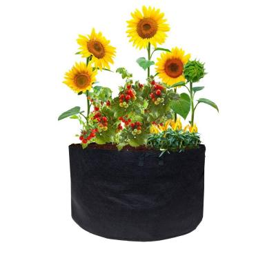 25 Gal. Plastic Mini Raised Garden Bed with Handles (3-Pack)