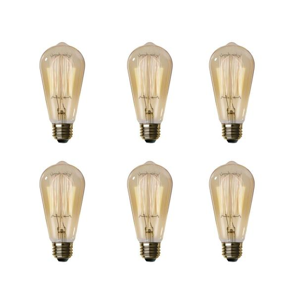 60-Watt ST19 Dimmable Incandescent Amber Glass Vintage Edison Light Bulb with Cage Filament Soft White (6-Pack)