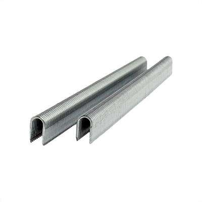18-Gauge 3/8 in. Glue Collated Fencing Staples (5000-Count)