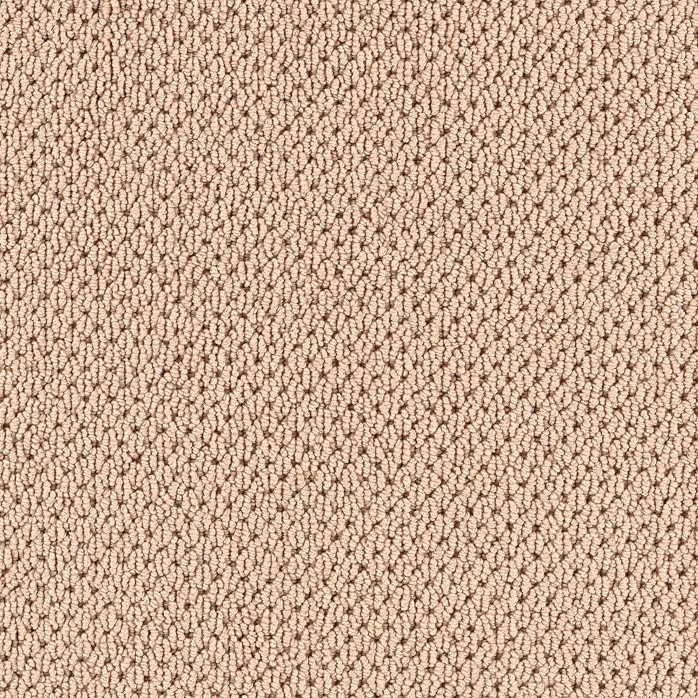 Trafficmaster Carpet Warranty Carpet Vidalondon