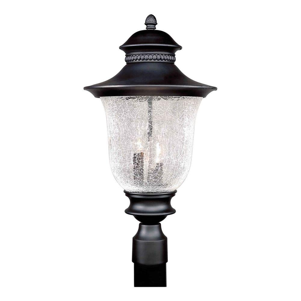 Forte Lighting 3-Light Black Outdoor Post Light With Clear