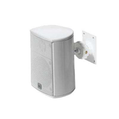 Architectural Edition100-Watt Expansion Satellite Speaker - White