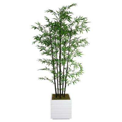 78 in. Tall Black Bamboo Tree in 14 in. Fiberstone Planter