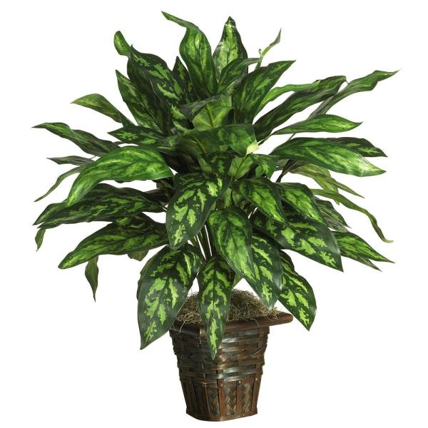 31 in. Silver King with Basket Silk Plant