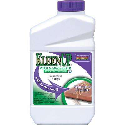 KleenUp 32 oz. 41% Concentrate Weed and Grass Killer