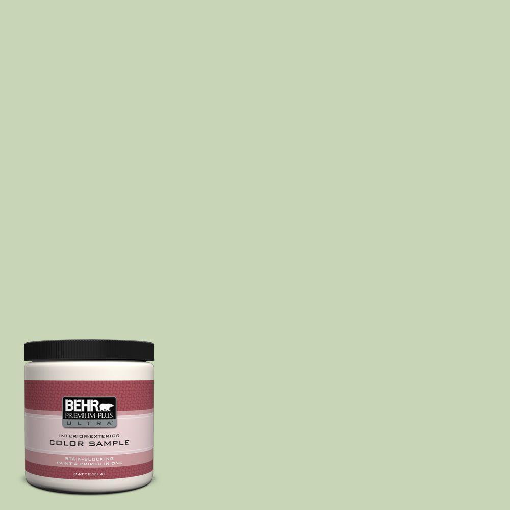 BEHR Premium Plus Ultra 8 oz. #M370-3 Spice Garden Interior/Exterior Paint Sample