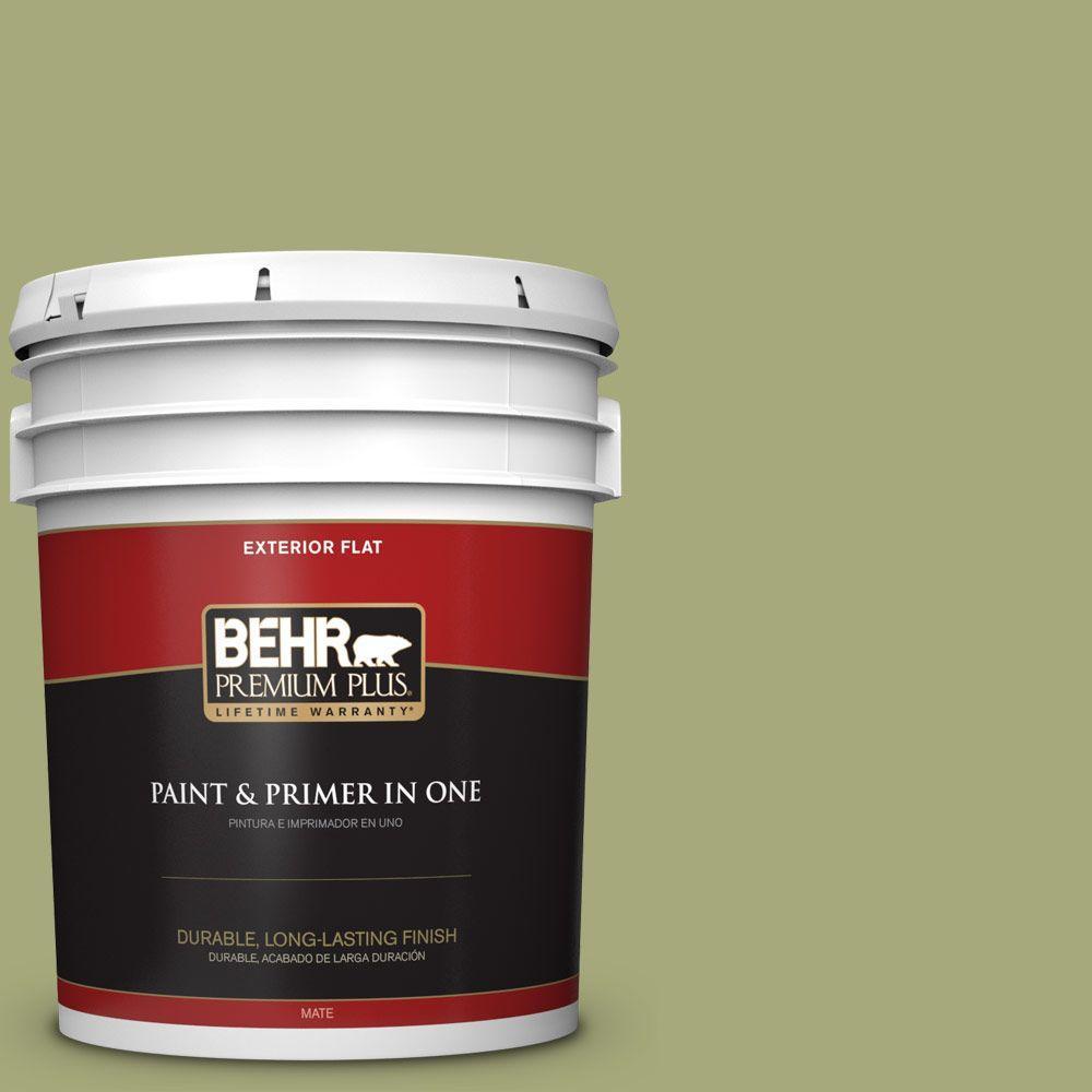 BEHR Premium Plus 5-gal. #M350-5 Mossy Cavern Flat Exterior Paint