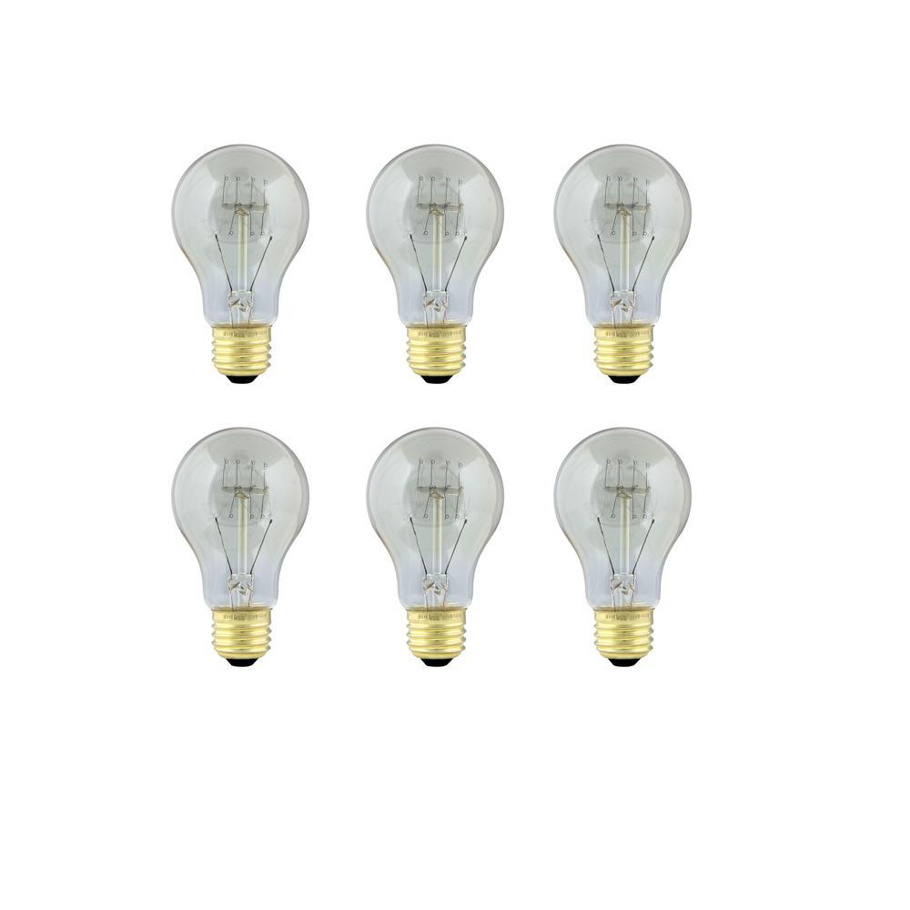 60-Watt Soft White AT19 Incandescent Original Vintage Style Light Bulb (Case