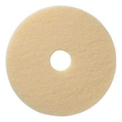 20 in. Beige Encapsulation Carpet Cleaning Pad 20 (5-Pack)