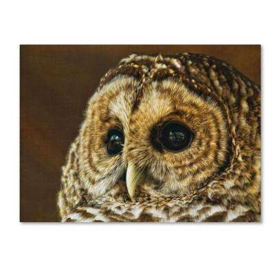 22 in. x 32 in. Barred Owl Portrait Canvas Art