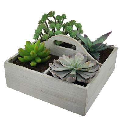 Artificial Succulent Plant Garden in Wooden Box