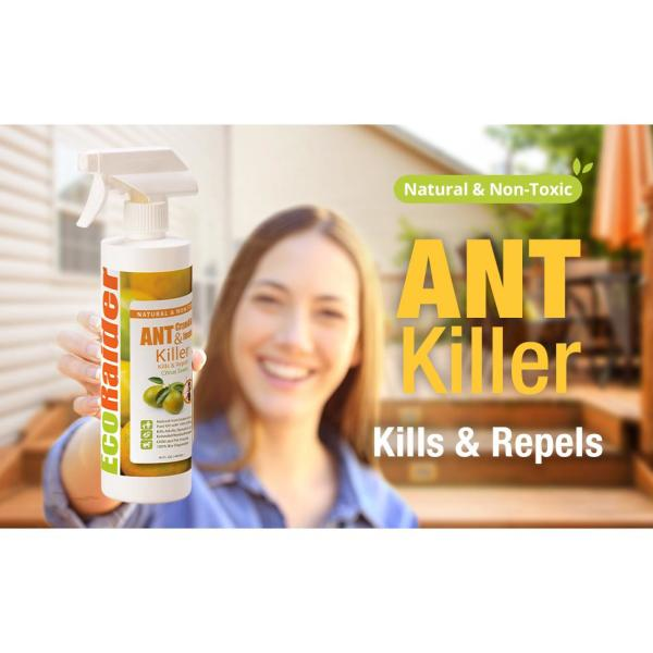 Ecoraider 32 Oz Natural And Non Toxic Spray Ant And Crawling Insect Killer With Remote Trigger Sprayer Eh1rm50032 The Home Depot