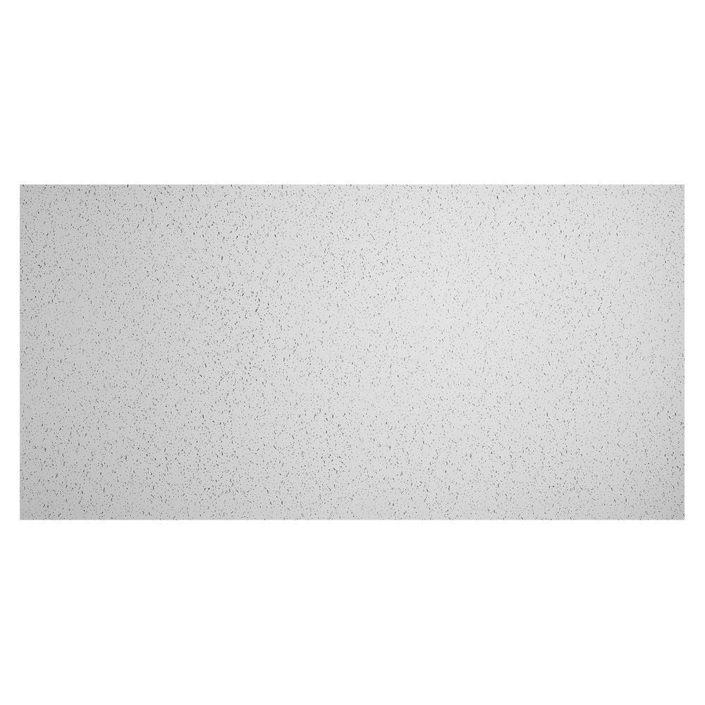 23.75in. x 47.75in. Printed Pro Lay-In Vinyl White Ceiling Tile (Case of 10)