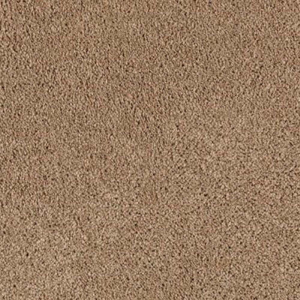 Carpet Sample - Ambrosina II - Color Montebello Texture 8 in. x 8 in.