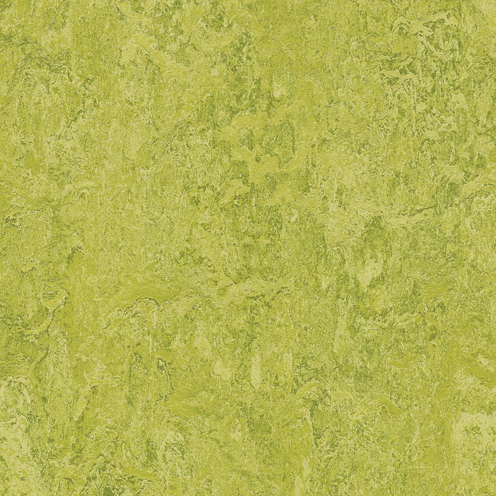 Marmoleum Click Cinch Loc Chartreuse 9.8 mm Thick x 11.81 in. Wide x 35.43 in. Length Laminate Flooring (20.34 sq. ft. / case)