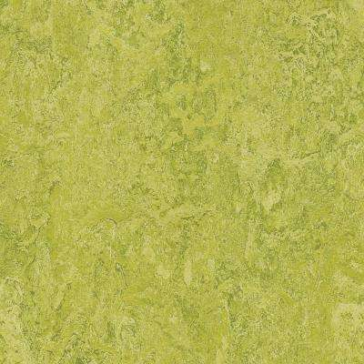 Chartreuse 9.8 mm Thick x 11.81 in. Wide x 35.43 in. Length Laminate Flooring (20.34 sq. ft. / case)