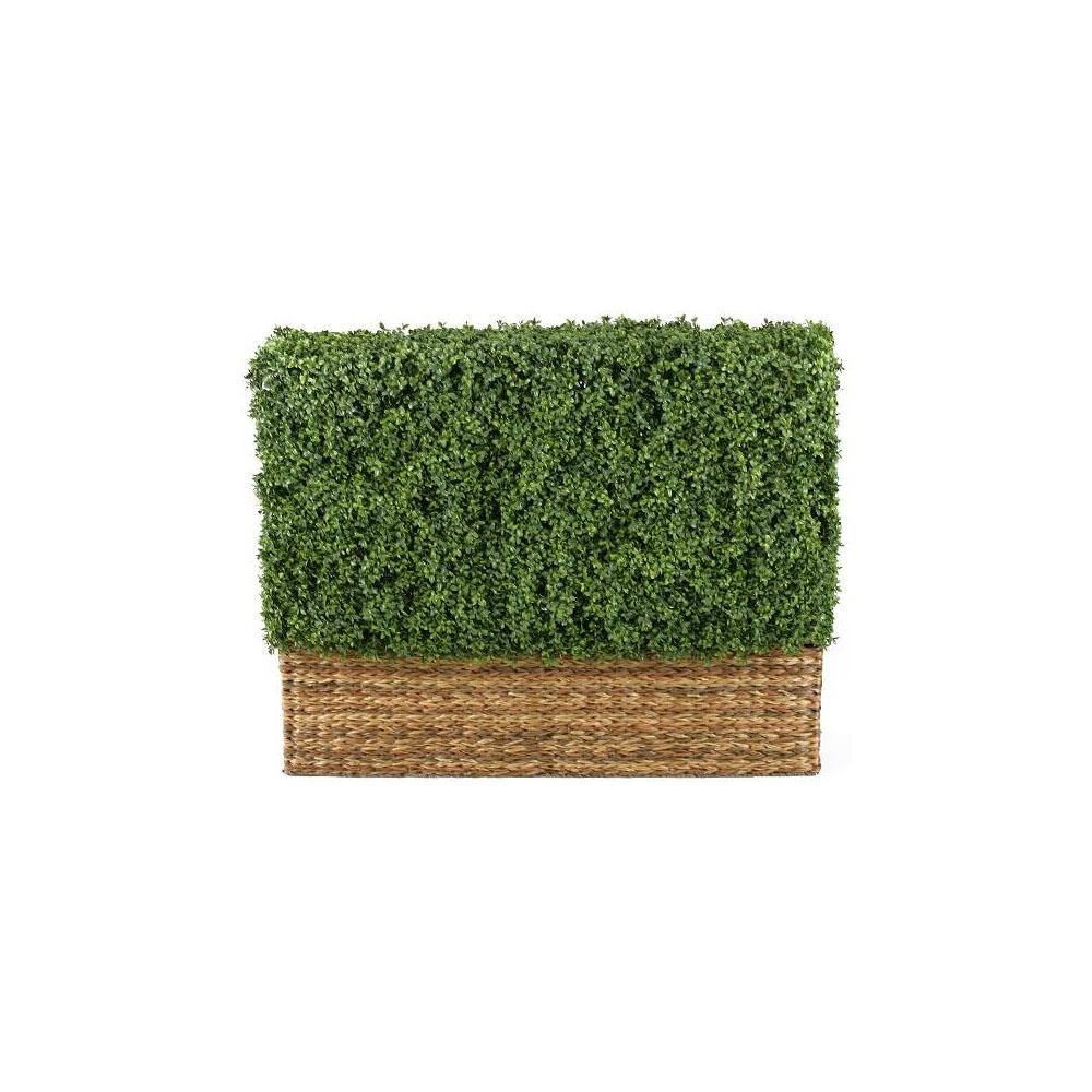 Home Decorators Collection Hamptons 4 Ft Hedge Topiary
