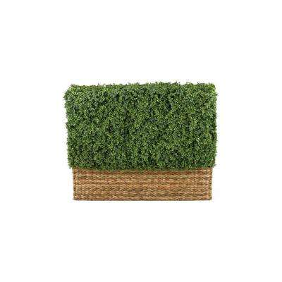 Hamptons 4 ft. Hedge Topiary