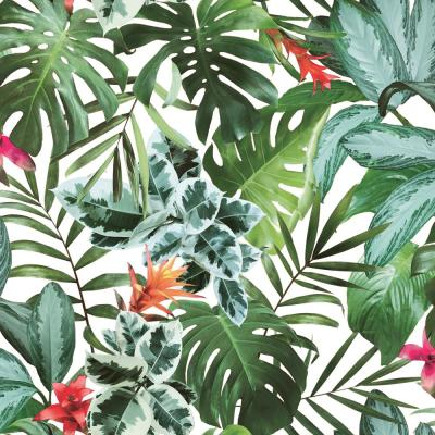 Rainforest Self-Adhesive Removable Wallpaper