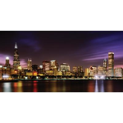 54 in. x 27 in. Chicago Skyline Wall Mural