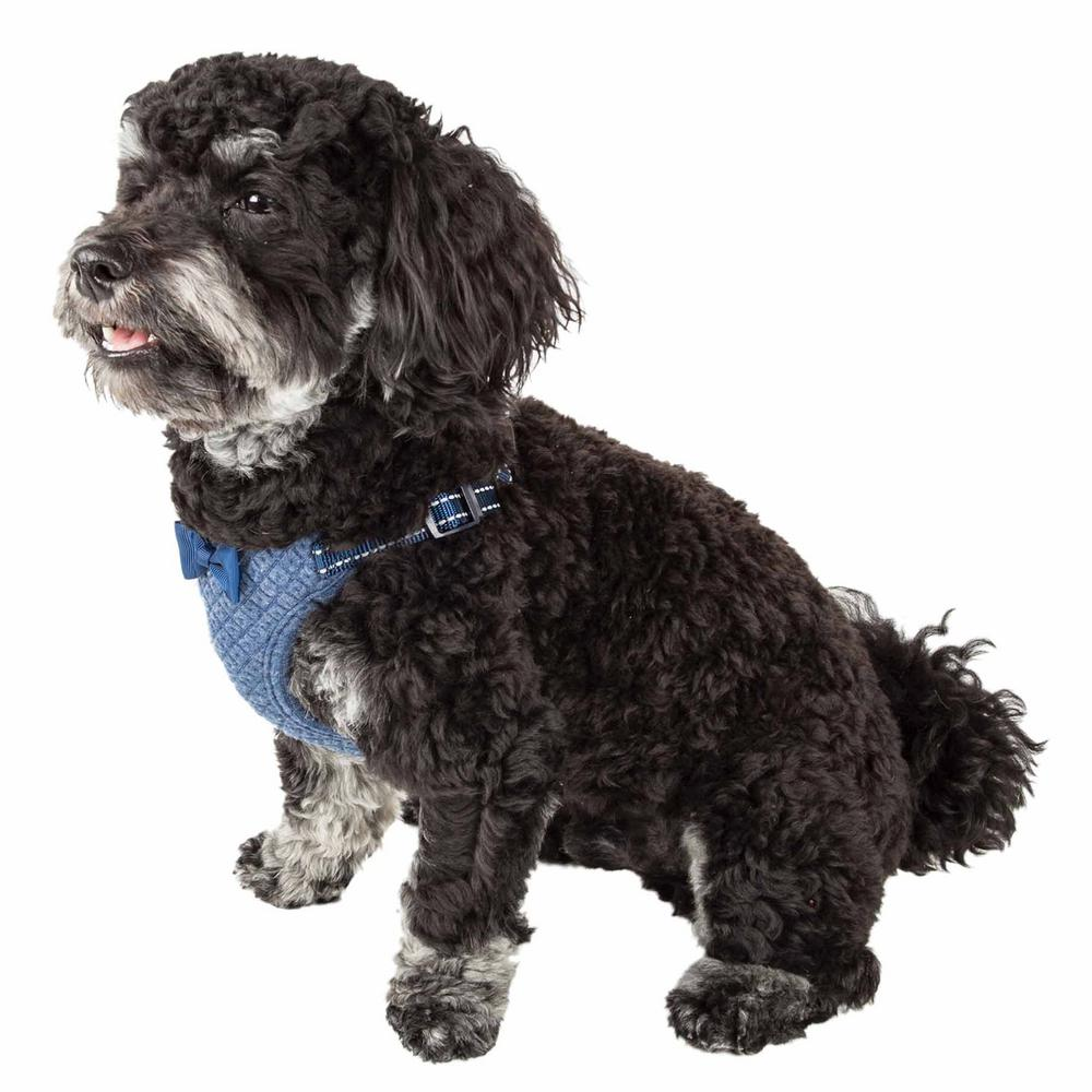 Flam-Bowyant Medium Reversible and Adjustable Dog Harness with Bowtie in Navy