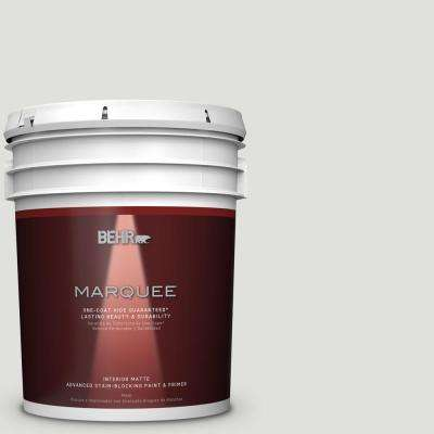 5 gal. #MQ3-45 Looking Glass One-Coat Hide Matte Interior Paint