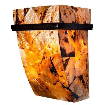 Big 1-Light Brilliant Mojave Chocolate Tiger Shell Sconce