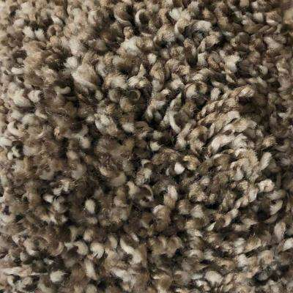 Trendy Threads I - Color Stunner Texture 12 ft. Carpet