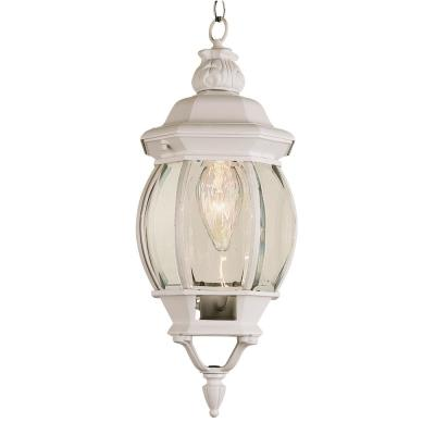White 1-Light Outdoor Hanging Lantern with Clear Glass