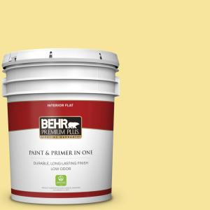 Behr Premium Plus 5 Gal P310 4 Storm Lightning Flat Low Odor Interior Paint And Primer In One 140005 The Home Depot