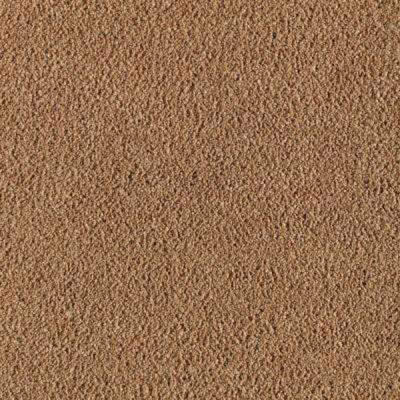 Carpet Sample - Wesleyan II - Color Maple Tint Texture 8 in. x 8 in.