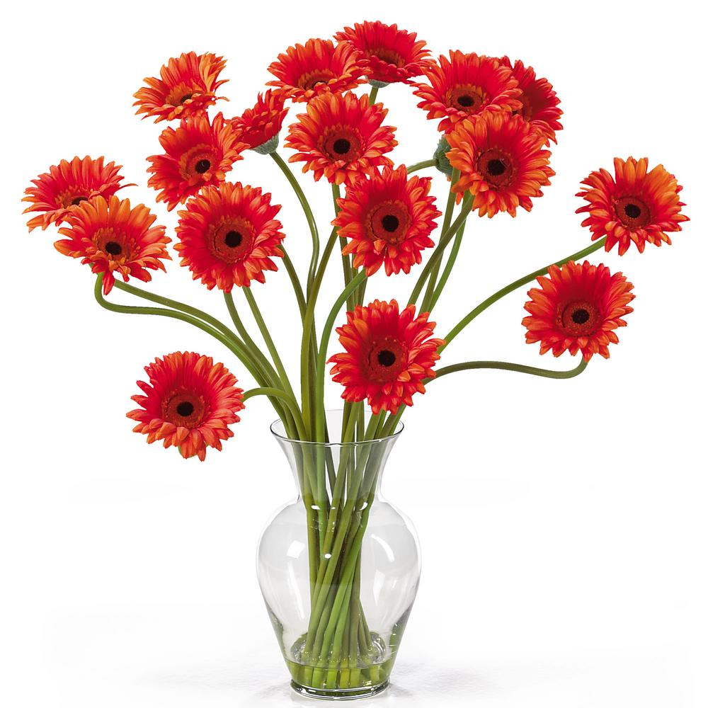 Nearly Natural 21 in. Gerber Daisy Liquid Illusion Silk Flower Arrangement in Orange Take a look at this Gerber Daisy silk arrangement. Fun, excitement, and color only begin to describe its beauty. Standing 21 in. tall this exciting piece features eighteen stems of Gerber Daisy's set in a classic glass vase with artificial water. If you're looking to brighten up your home or office decor, well. You've just found a winner. Available in five gorgeous shades: beauty, orange, pink, red, yellow and mixed.