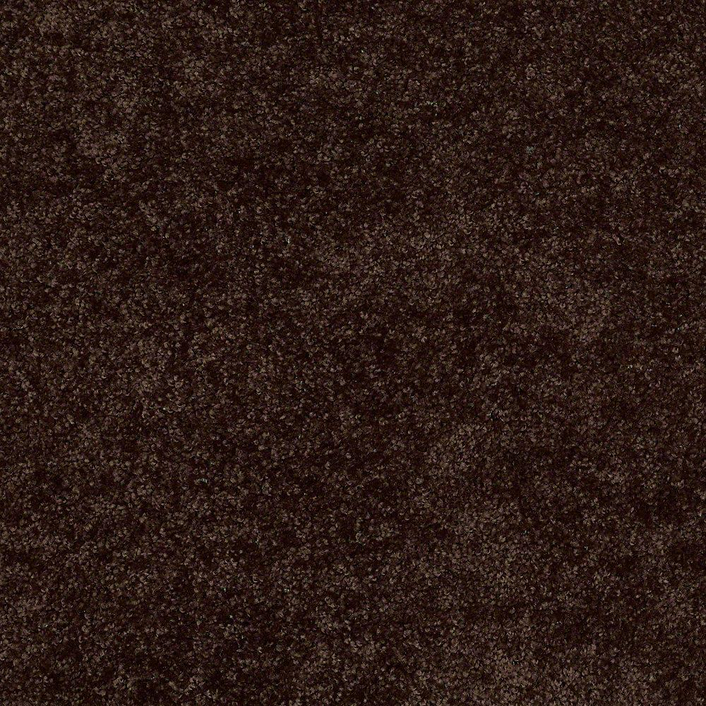 Carpet Sample - Alpine 12 - In Color Exploration 8 in.