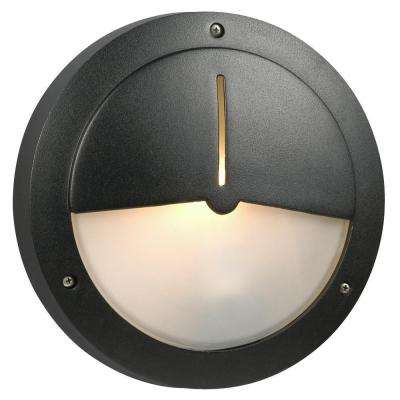 Negron 1-Light Outdoor Black Wall Light