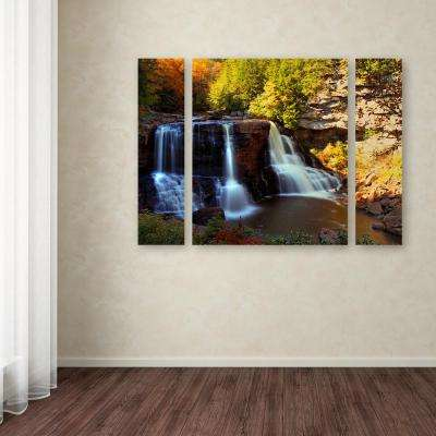 """30 in. x 41 in. """"Motion"""" by CATeyes Printed Canvas Wall Art"""