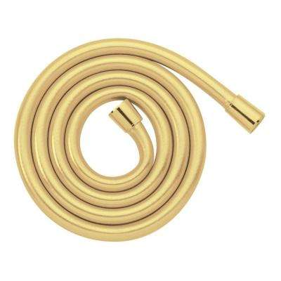 Techniflex 1/2 in. x 63 in. Rubber Hand Shower Hose in Brass