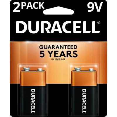 Coppertop Alkaline 9-Volt Battery (2-Pack)
