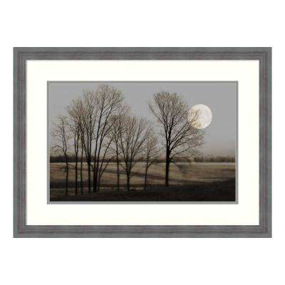 """November Moon"" by Heather Jacks Framed Wall Art"