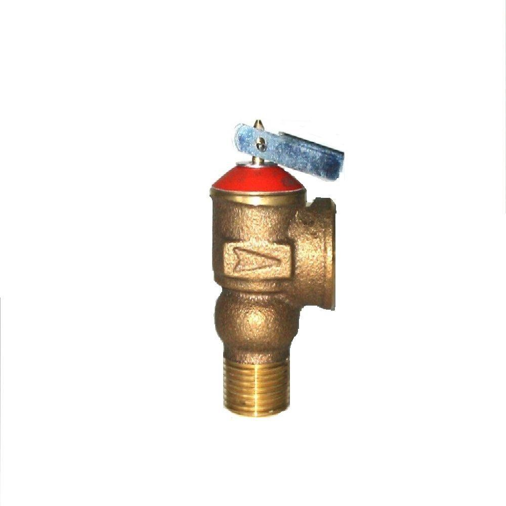 3/4 in. Steam Relief Valve