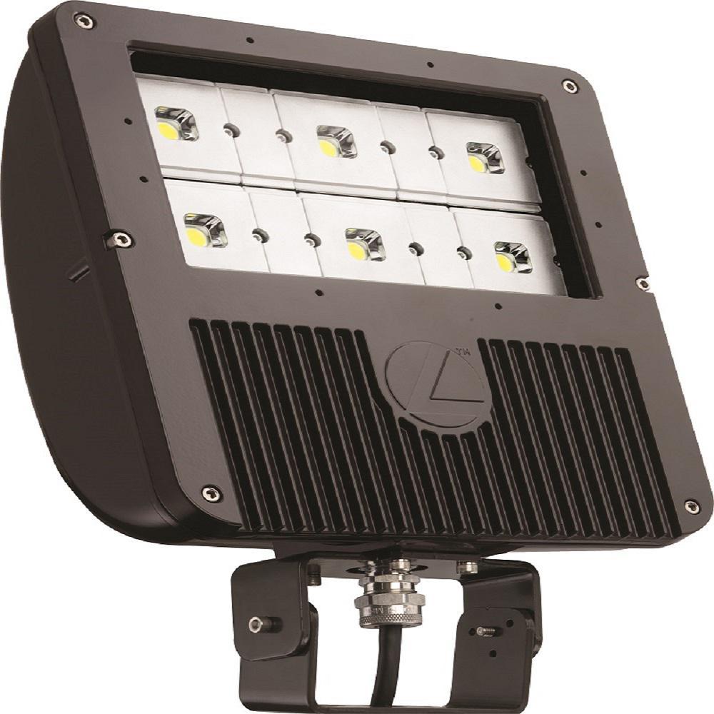 Lithonia Outdoor Security Lighting: Lithonia Lighting 129 -Watt Dark Bronze Outdoor Integrated