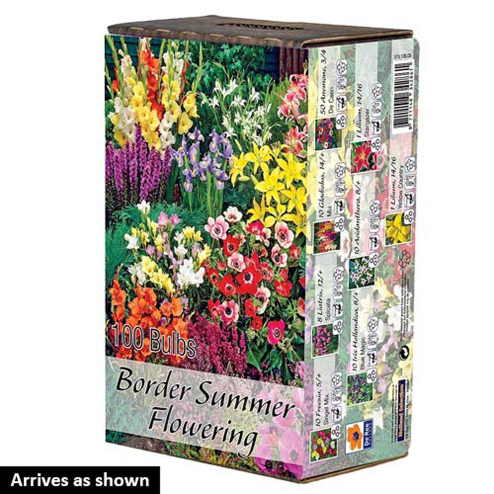Van Bourgondien Border Summer Flowering Garden Bulbs 100 Pack