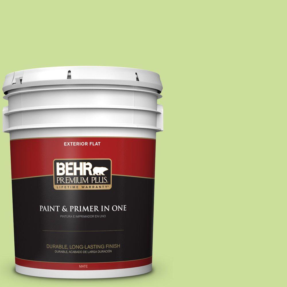 BEHR Premium Plus 5-gal. #420A-3 Key Lime Flat Exterior Paint
