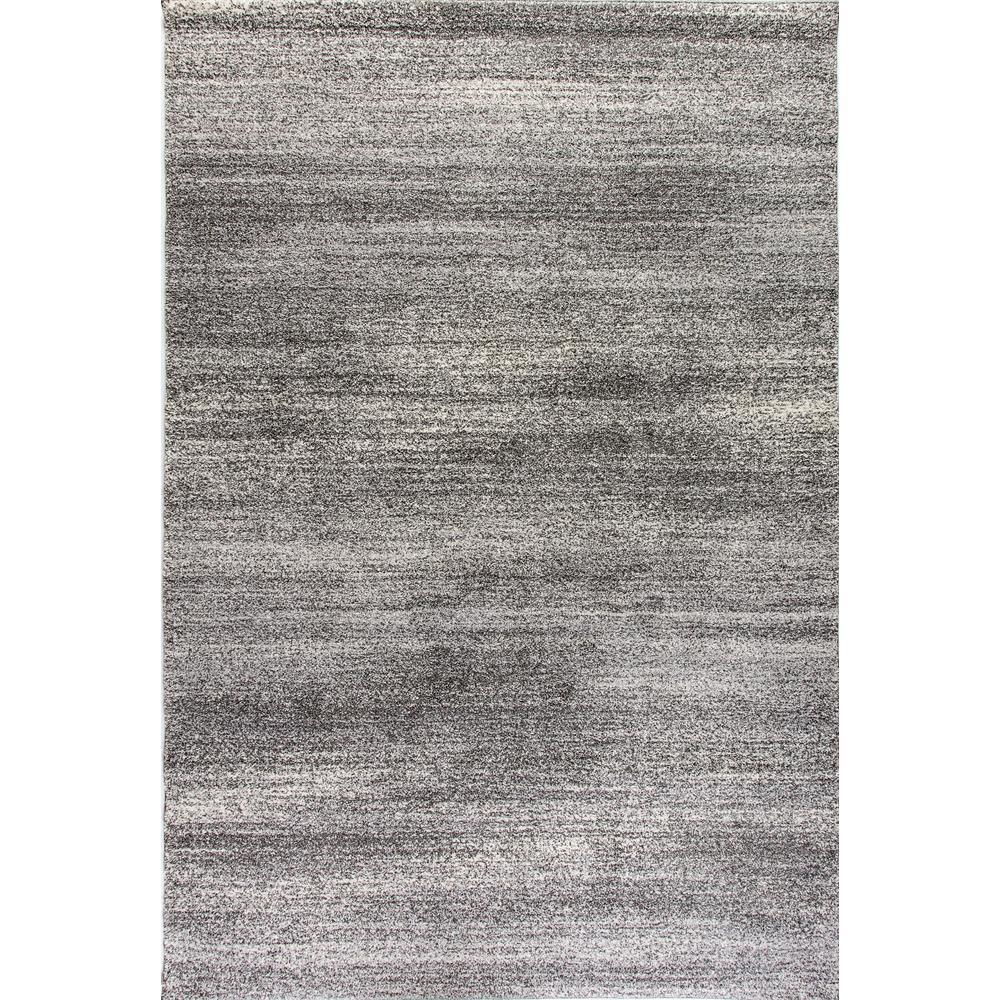 Lucy Dark Grey 8 ft. x 11 ft. Indoor Area Rug