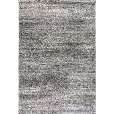 Lucy Dark Grey 8 ft. x 11 ft. Indoor Area Rug